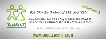 fundraising-managers