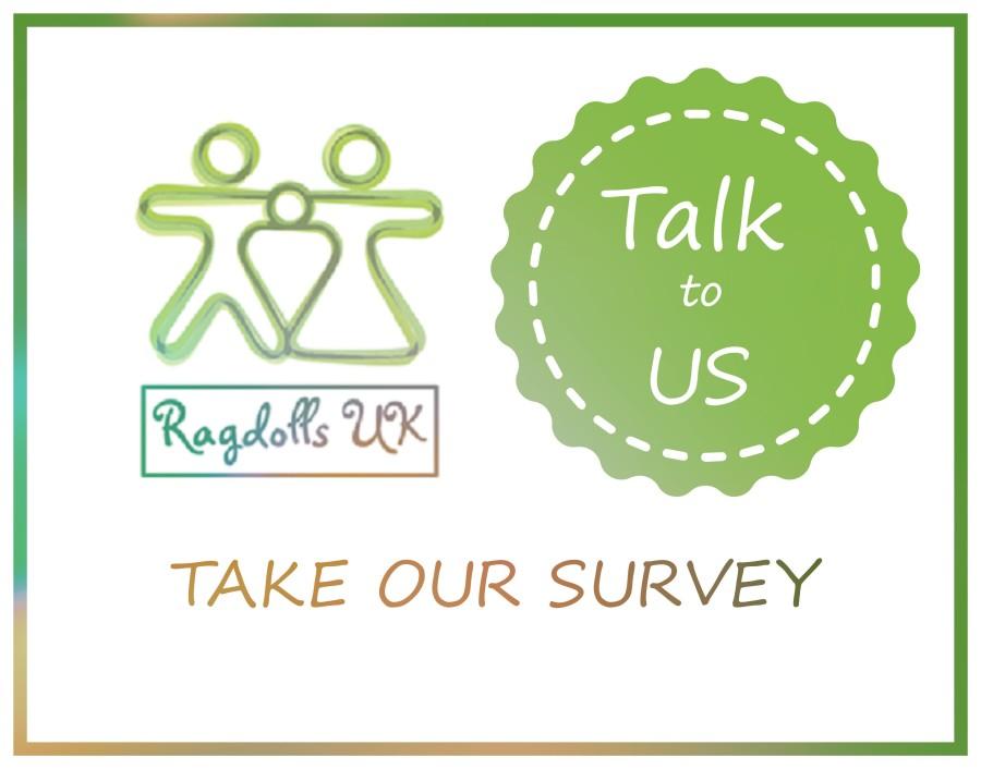 survey-pic